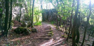Pri prechádzke lesom môžete naraziť na takúto čarovnú opustenú železnicu
