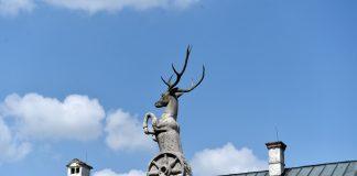 Odvážneho jeleňa nájdete aj na samotnom nádvorí hradu