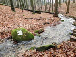 Vyberte sa na zimný výlet čarovným údolím Vydrice.