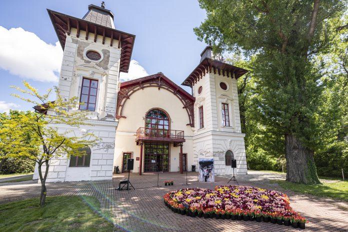 V máji vytvorilo Divadlo Aréna srdce obetiam covidu z tisícov živých kvetov.