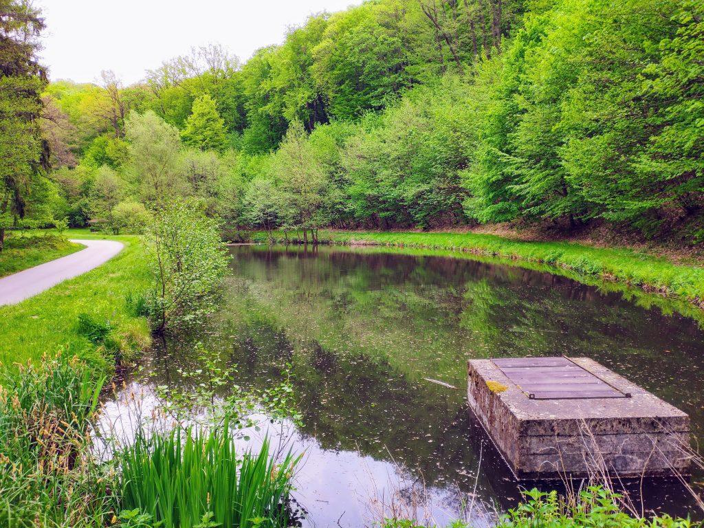 Šiesty rybník v údolí Vydrice
